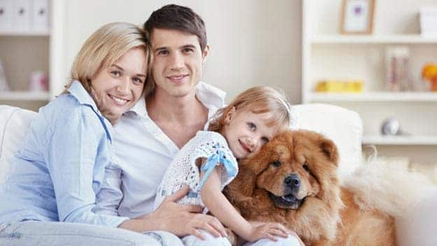 Wills & Trusts dog-young-family Direct Wills Eton
